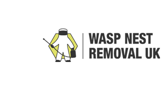 Wasps Nests Removals Stalbridge Pest Wright